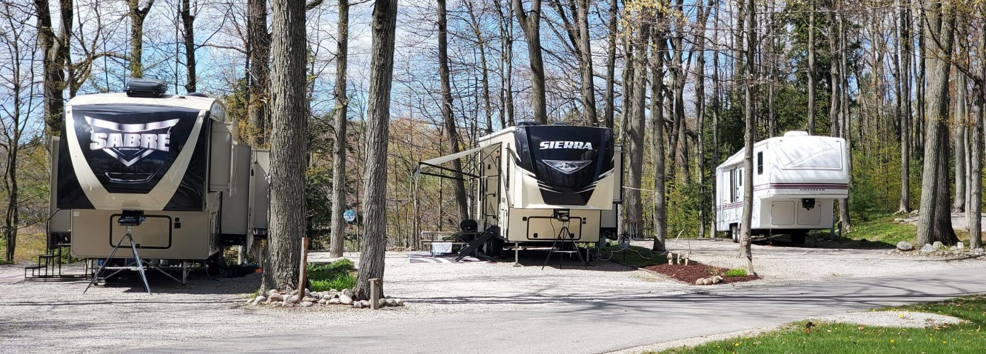 Beautiful wooded sites at Holiday Park Campground
